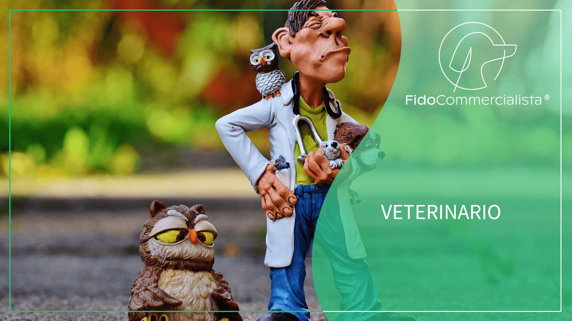 veterinarian-1050805_1920 (1)